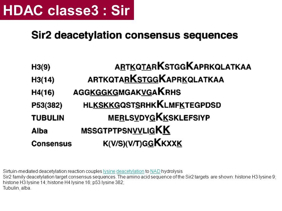 HDAC classe3 : Sir