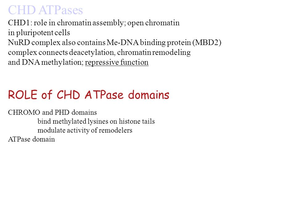 CHD ATPases ROLE of CHD ATPase domains