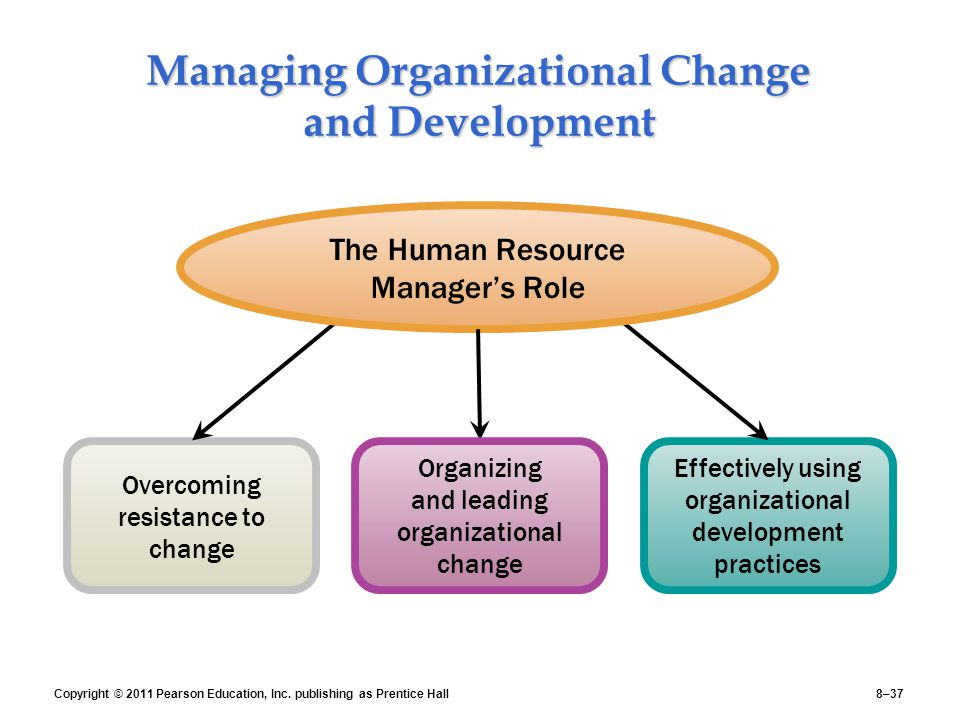 issues in change and organizational development Organizational development's main purpose is to improve a company's performance by promoting the individual progress of the employees the process involves helping companies to increase their productivity or value via change in leadership, power, policies, job redesign or control.
