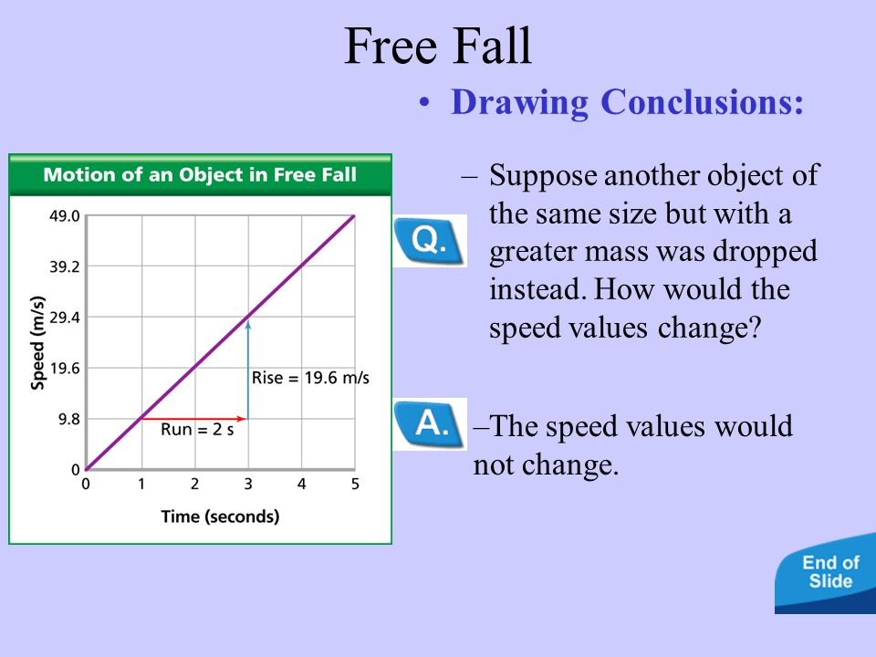 Free Fall Drawing Conclusions:
