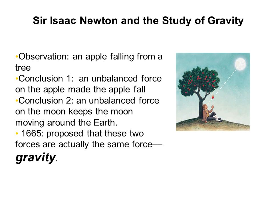 Sir Isaac Newton and the Study of Gravity