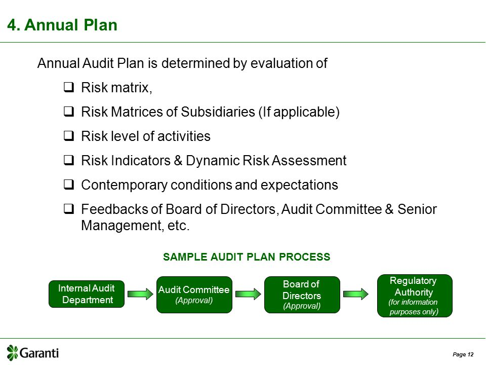 audit plan 1