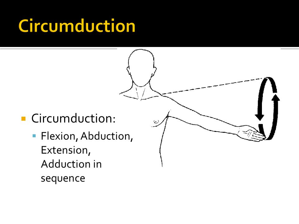 Fantastisch What Is Circumduction In Anatomy Fotos Menschliche
