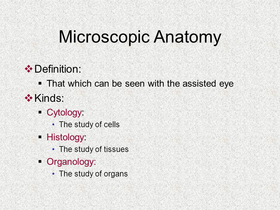 Microscopic Anatomy Definition Images - human body anatomy