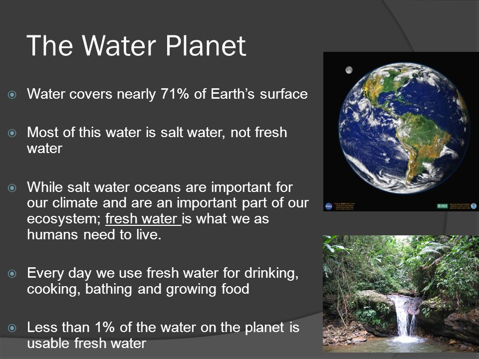 the composition importance and ecosystem of water in our planet Earth science generally recognizes 4 spheres, the lithosphere, the hydrosphere, the atmosphere, and the biosphere as correspondent to rocks, water.