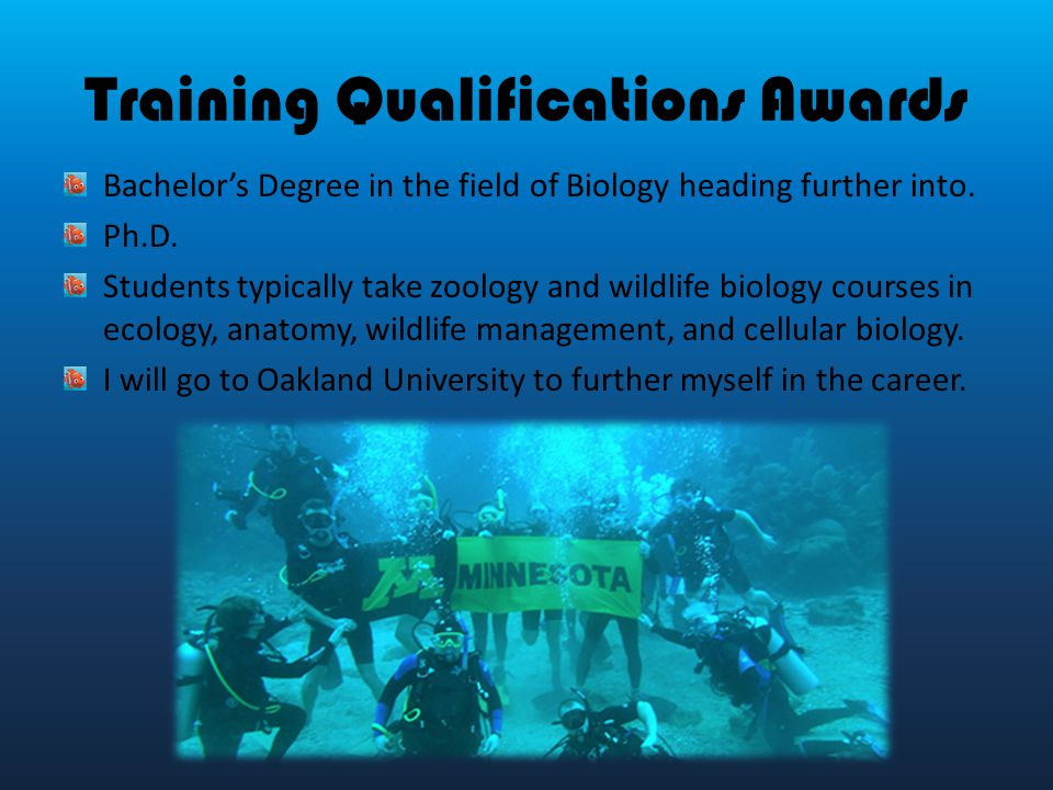 Marine Biology  St Hour Career Technology  Ppt Video