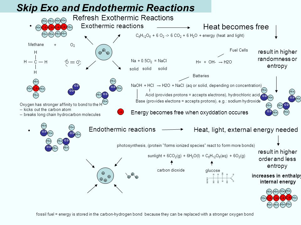photosynthesis endothermic reaction Learn about endothermic and exothermic chemical reactions and get instructions to perform your own hot and cold photosynthesis is an example of an endothermic here's a quick summary of the differences between endothermic and exothermic reactions: endothermic: exothermic: heat is.