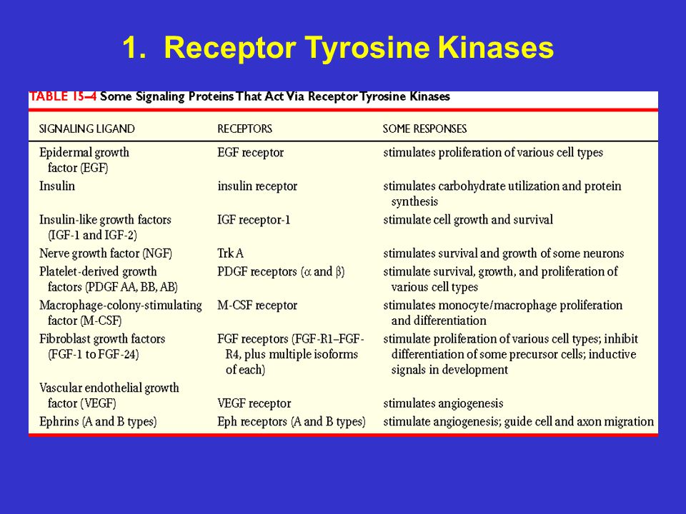 Non-receptor tyrosine kinase - Wikipedia