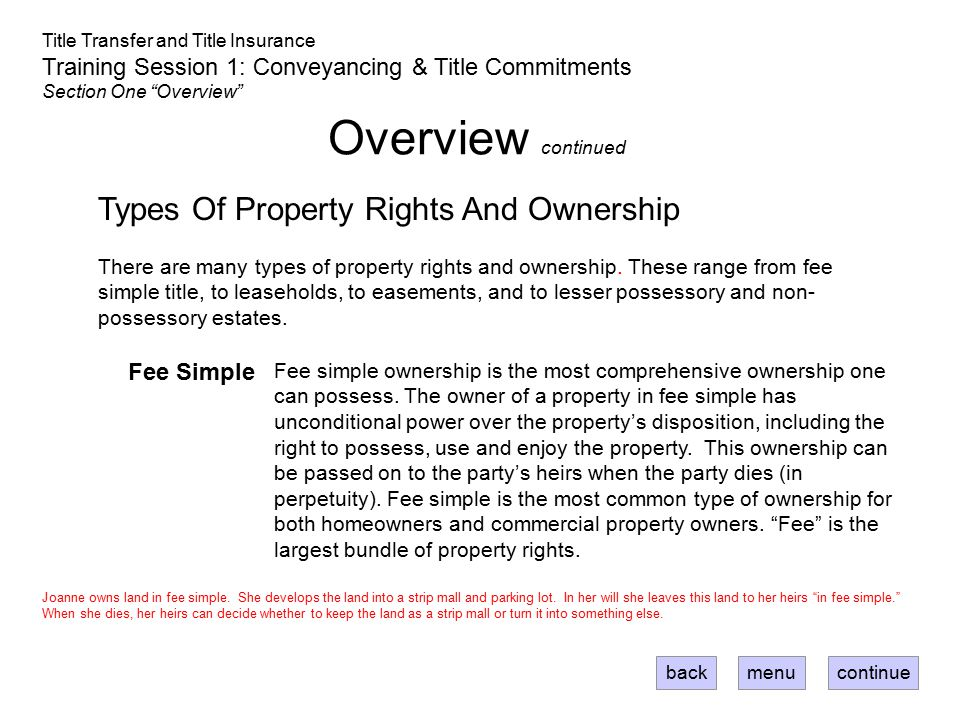 Overview continued Types Of Property Rights And Ownership