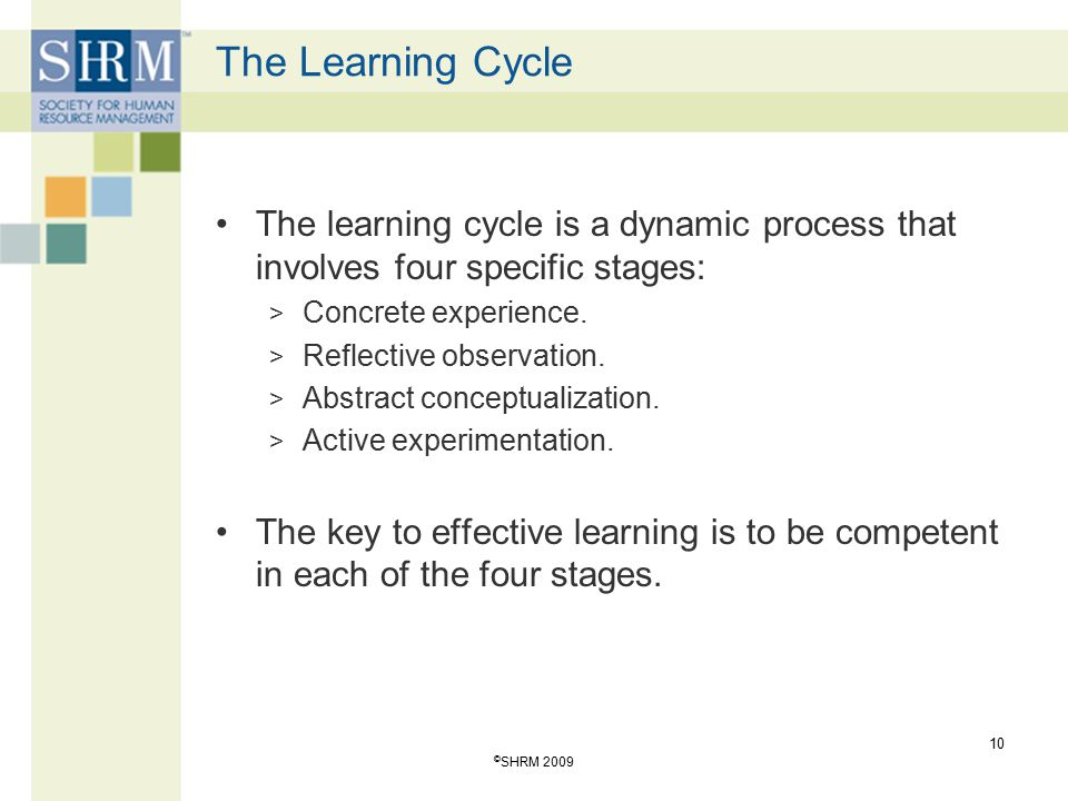 The Learning Cycle The learning cycle is a dynamic process that involves four specific stages: Concrete experience.