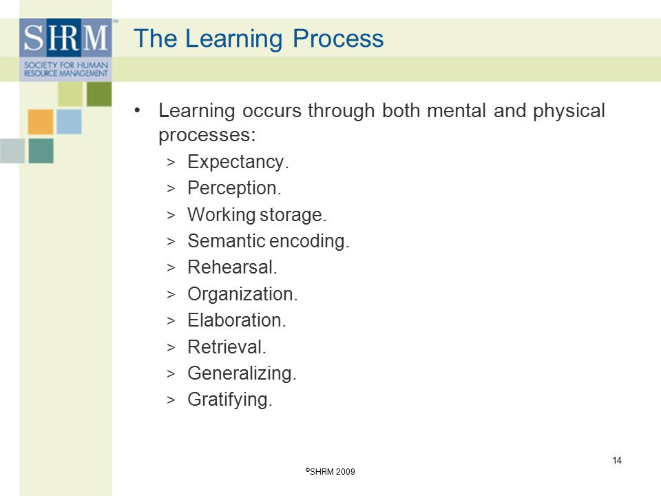 The Learning Process Learning occurs through both mental and physical processes: Expectancy. Perception.