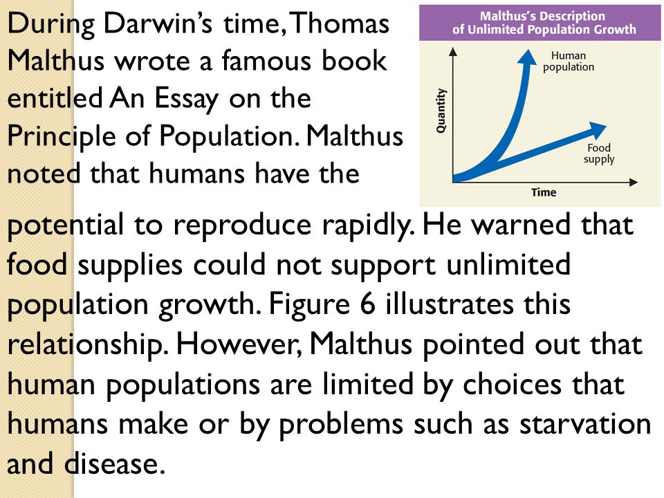 thomas malthus essay on the principles of population summary The book an essay on the principle of population was first published anonymously in 1798, but the author was soon identified as thomas robert malthus.