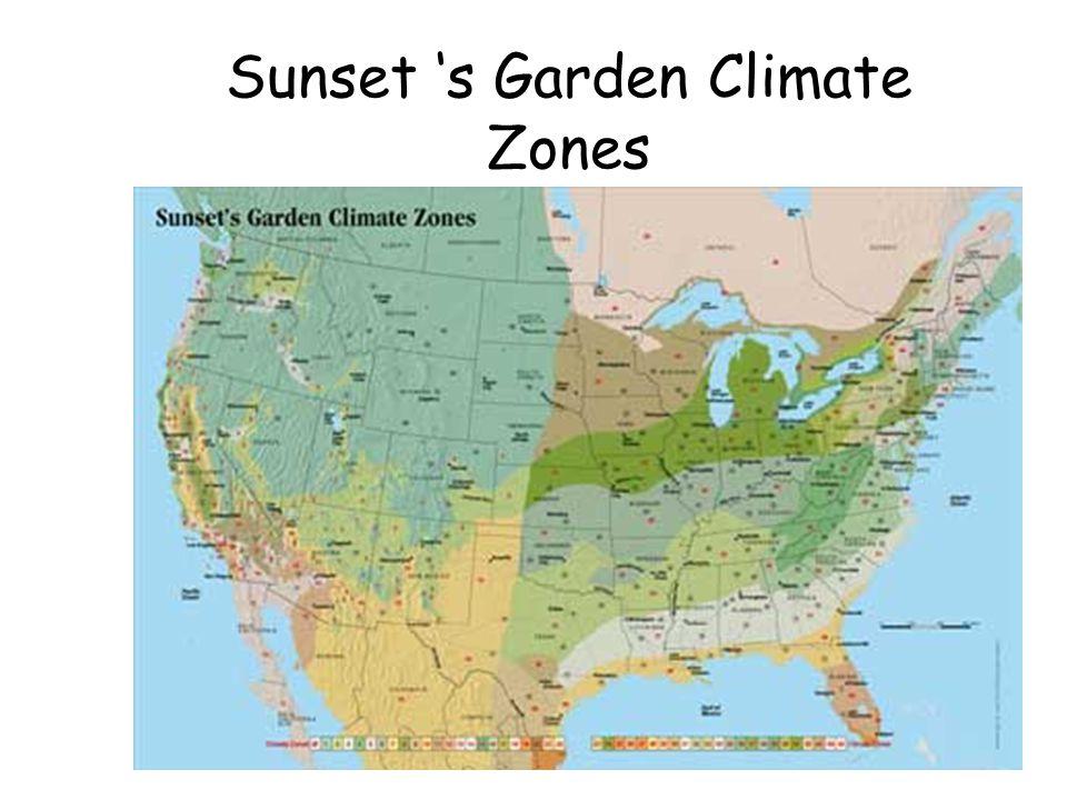 Zones 9 11 Gardening