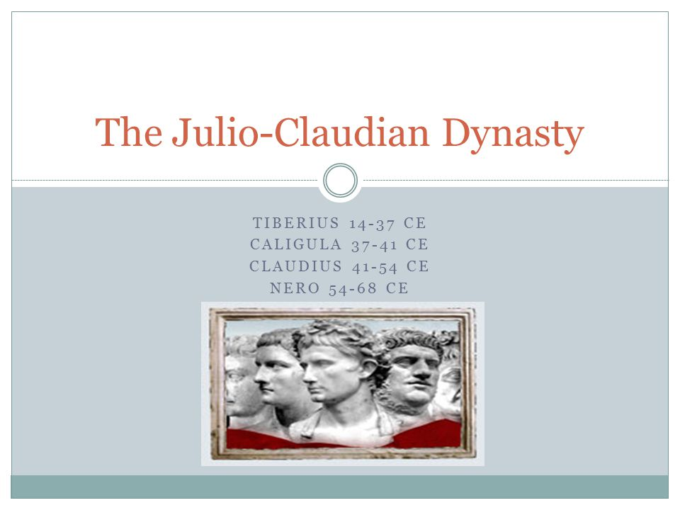 an analysis of the role of the praetorian guard and praetorian prefects under the julio claudians Julio-claudian notes political roles of the praetorian guard and army army very important augustus and the julio-claudians.
