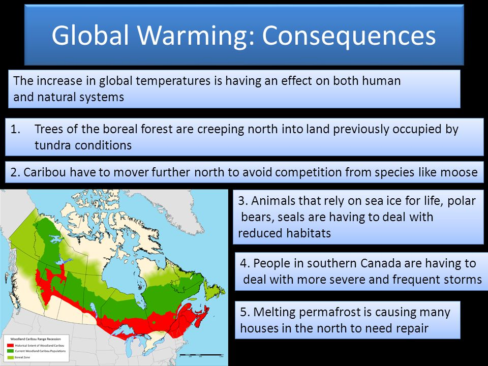 Global Warming: Consequences