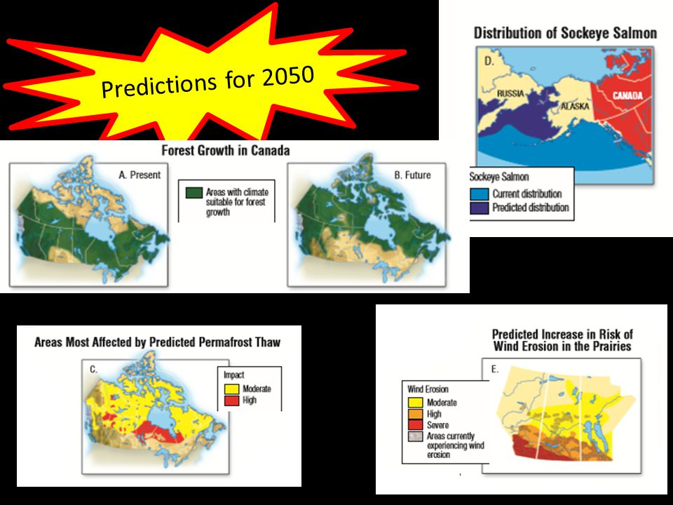 Predictions for 2050