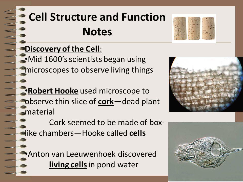 cell unit notes Cell unit activity #5 page 1 ap biology name_____ cell unit activity #5 date_____hour_____ cell transport membrane properties.