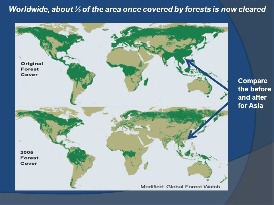 Worldwide, about ½ of the area once covered by forests is now cleared