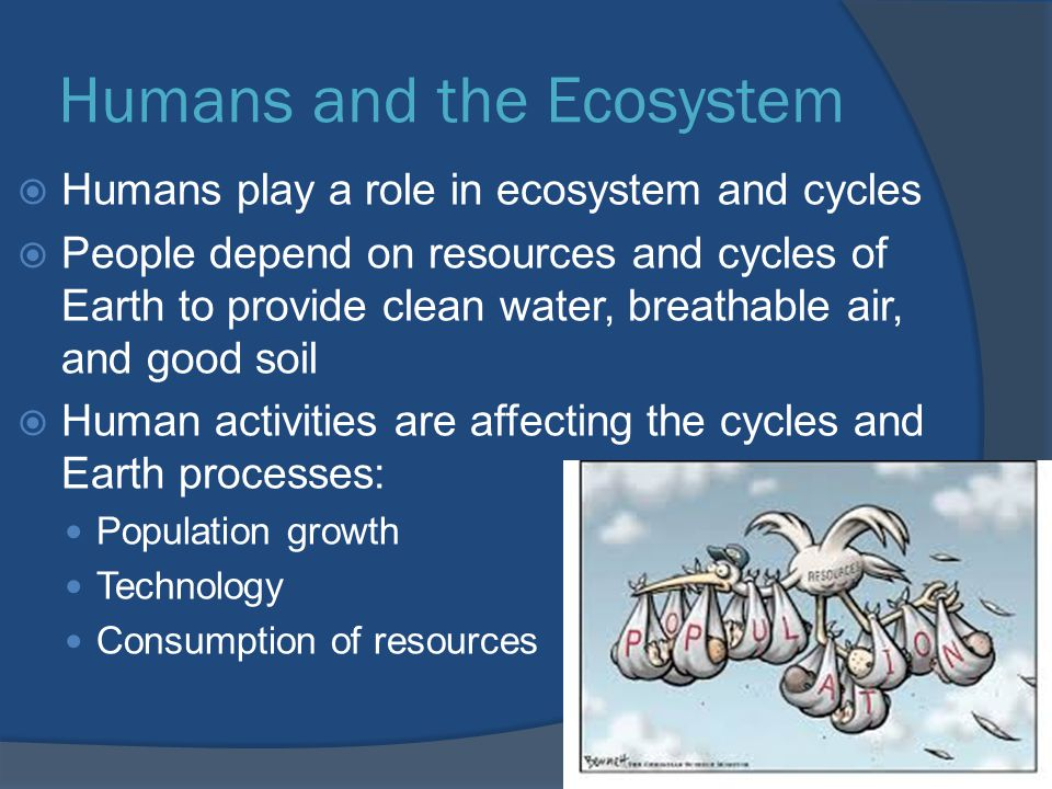 Humans and the Ecosystem