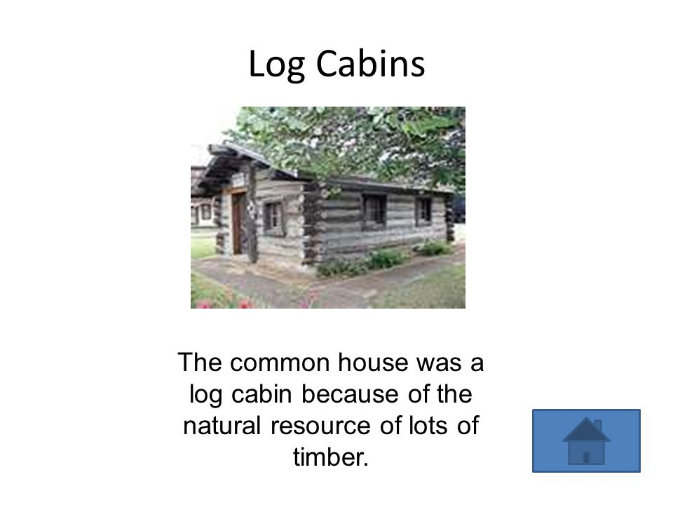 Log Cabins The common house was a log cabin because of the natural resource of lots of timber.