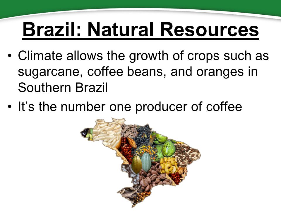 Essential Question How Do Location Climate And Natural - Natural resources of brazil
