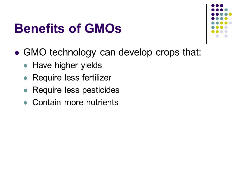 Genetically modified foods the answer to world hunger