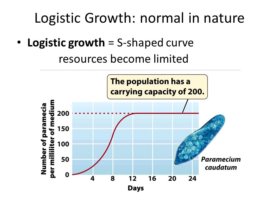 how to find carrying capacity logistic growth