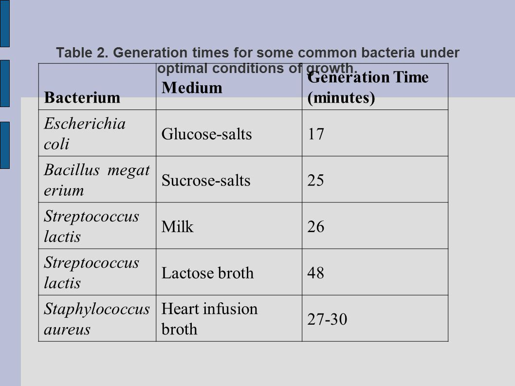Generation Time (minutes) Escherichia coli Glucose-salts 17