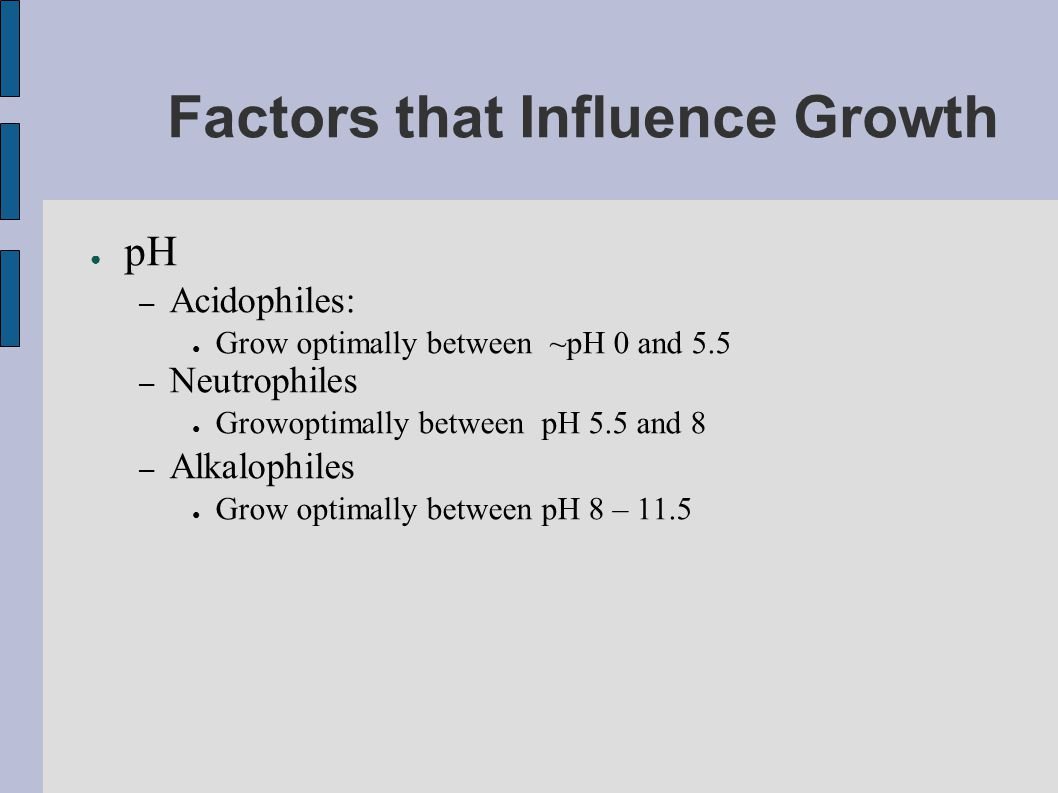 Factors that Influence Growth