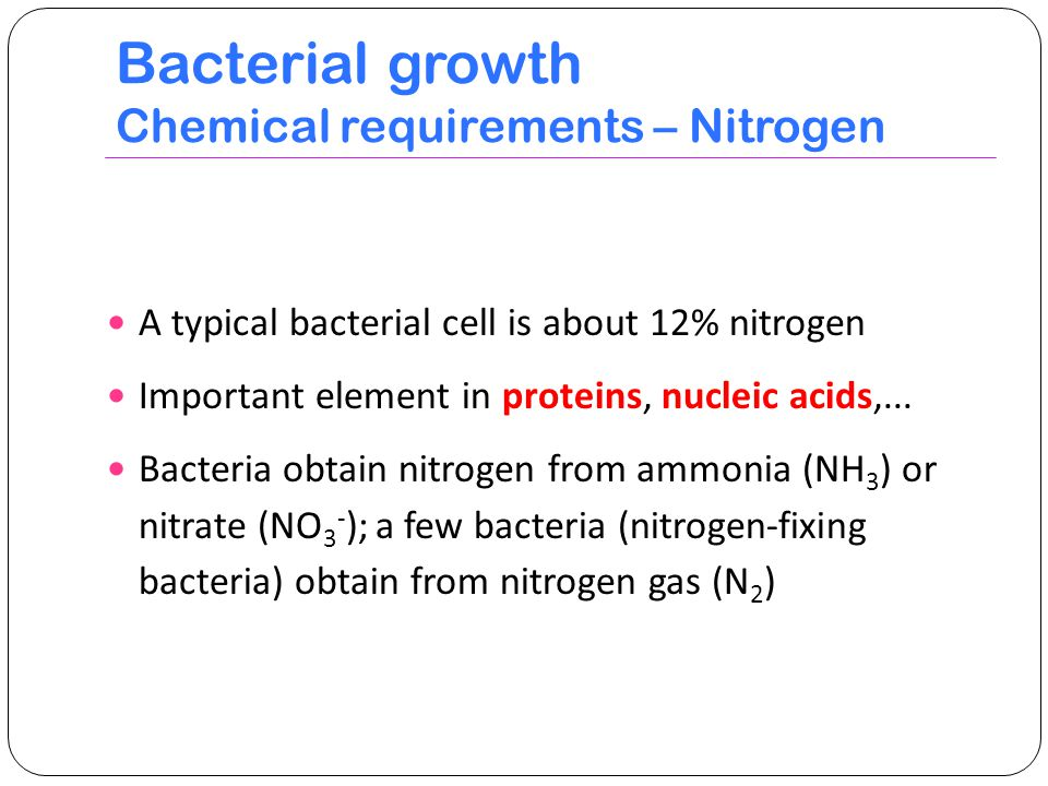 Bacterial growth Chemical requirements – Nitrogen