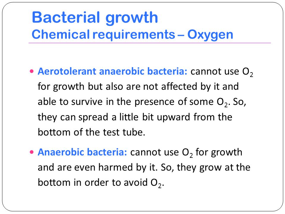 Bacterial growth Chemical requirements – Oxygen