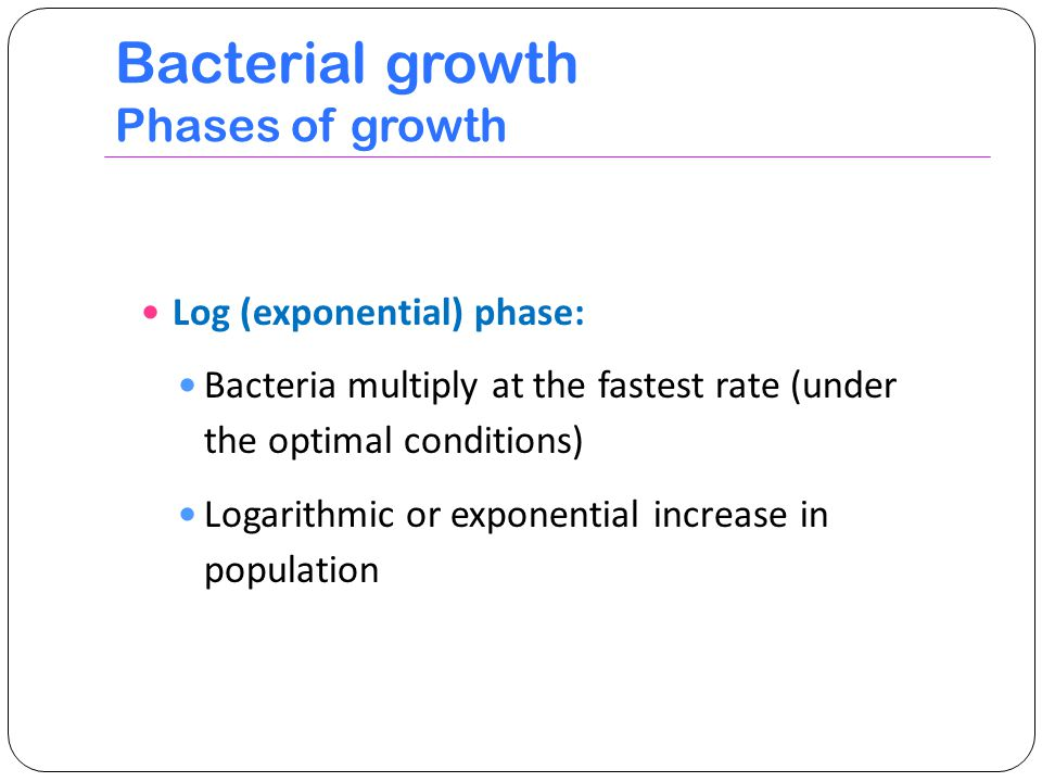 Bacterial growth Phases of growth