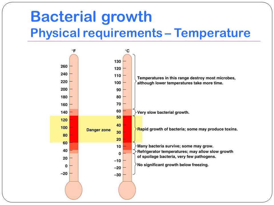 Bacterial growth Physical requirements – Temperature
