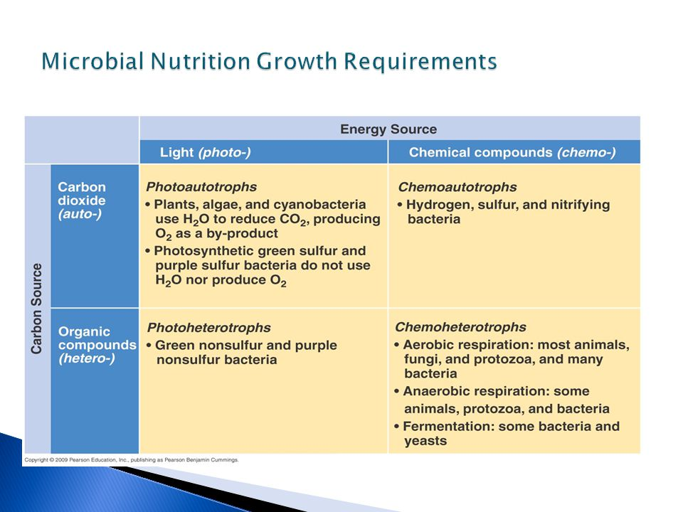 Microbial Nutrition Growth Requirements