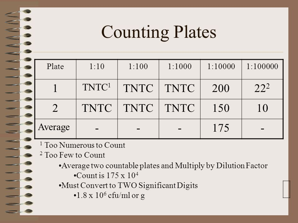 Counting Plates 1 TNTC TNTC1 Average Plate 1:10