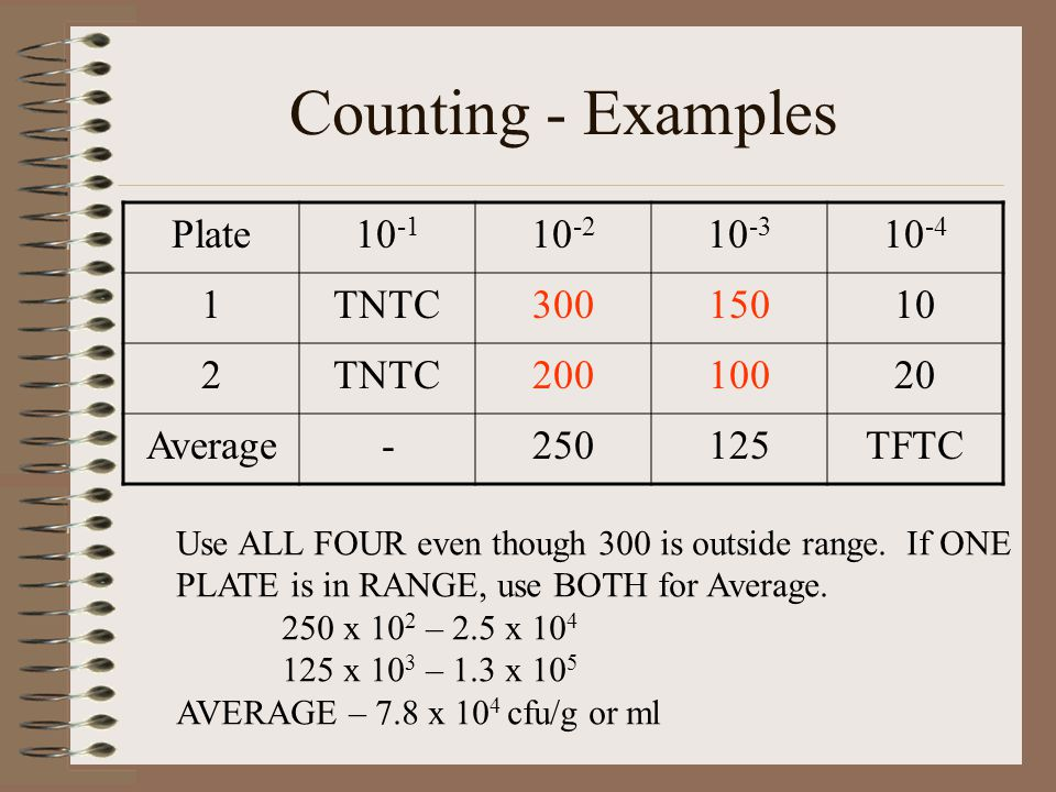 Counting - Examples Plate TNTC