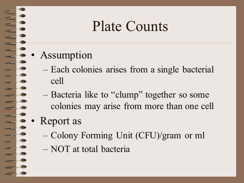 Plate Counts Assumption Report as