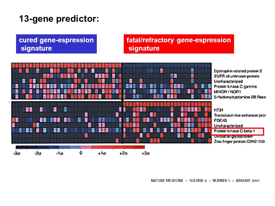 13-gene predictor: cured gene-espression signature