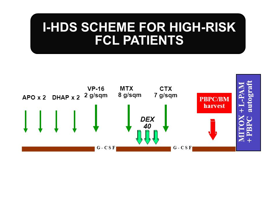 I-HDS SCHEME FOR HIGH-RISK FCL PATIENTS MITOX + L-PAM + PBPC autograft