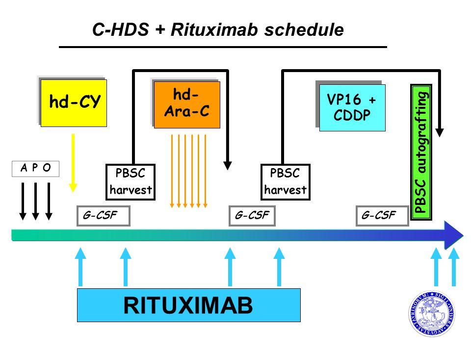 RITUXIMAB C-HDS + Rituximab schedule hd-CY hd- Ara-C VP16 + CDDP