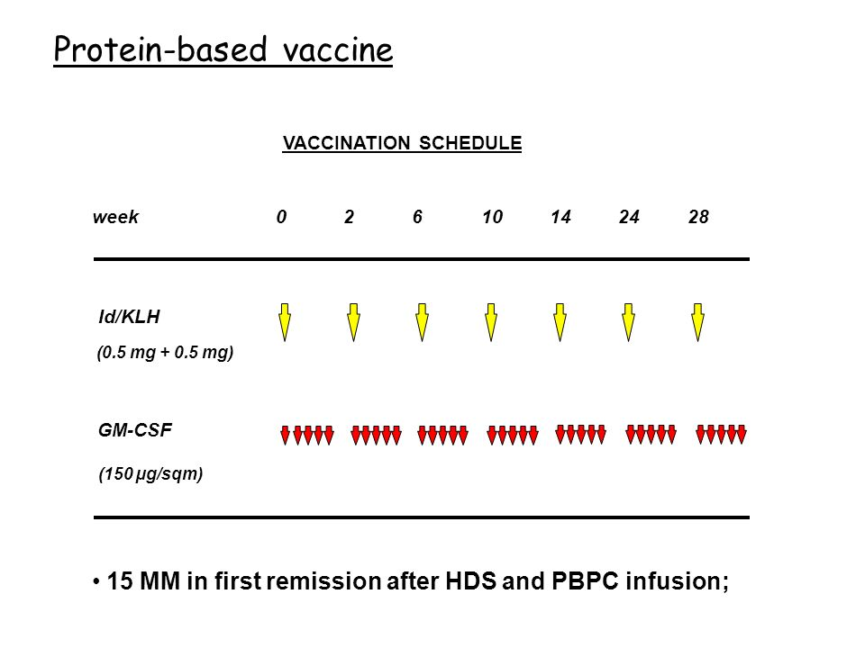 Protein-based vaccine