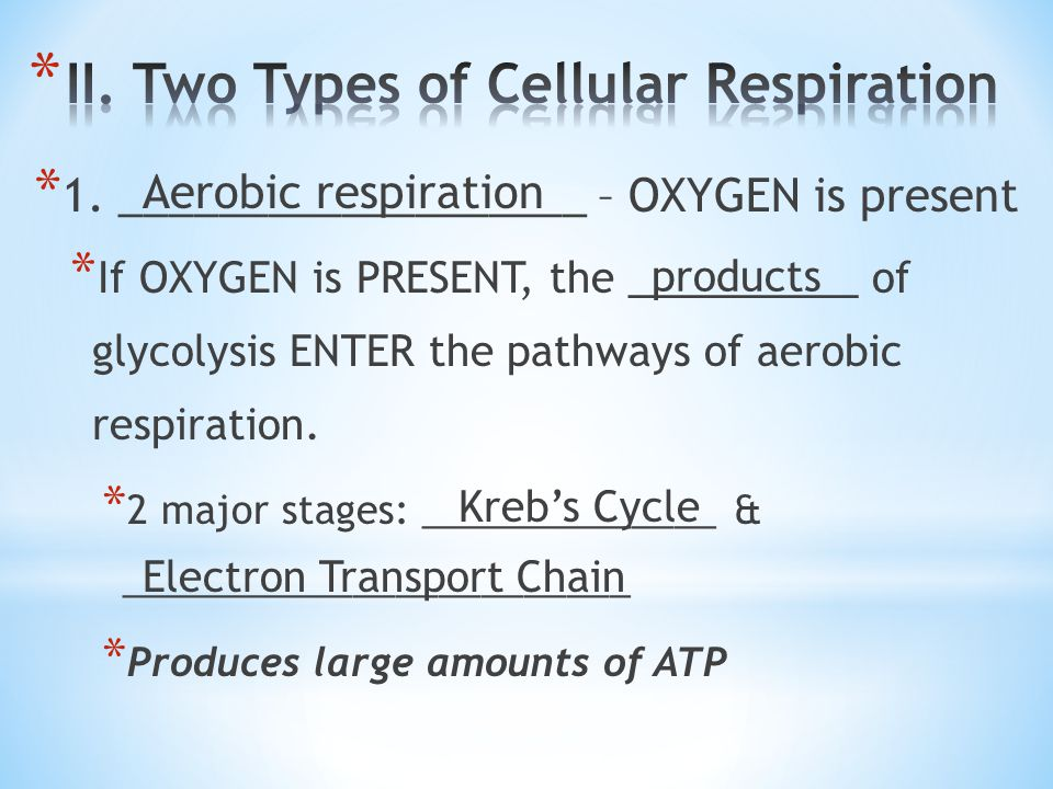 II. Two Types of Cellular Respiration