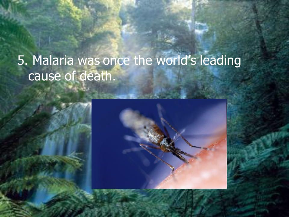 5. Malaria was once the world's leading cause of death.