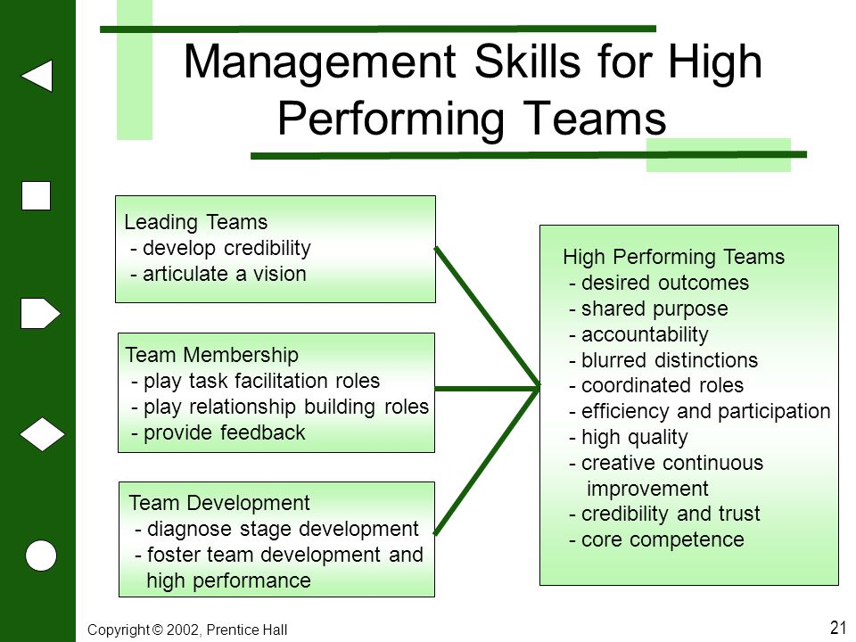 Management Skills for High Performing Teams