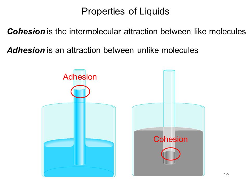Properties of Liquids Cohesion is the intermolecular attraction between like molecules. Adhesion is an attraction between unlike molecules.
