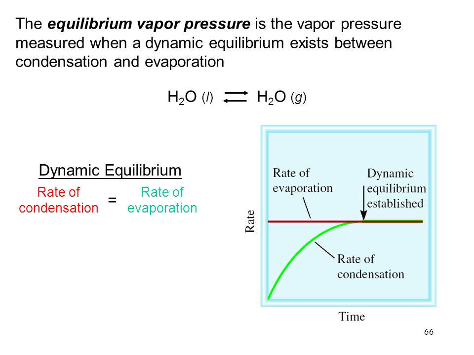 The equilibrium vapor pressure is the vapor pressure measured when a dynamic equilibrium exists between condensation and evaporation
