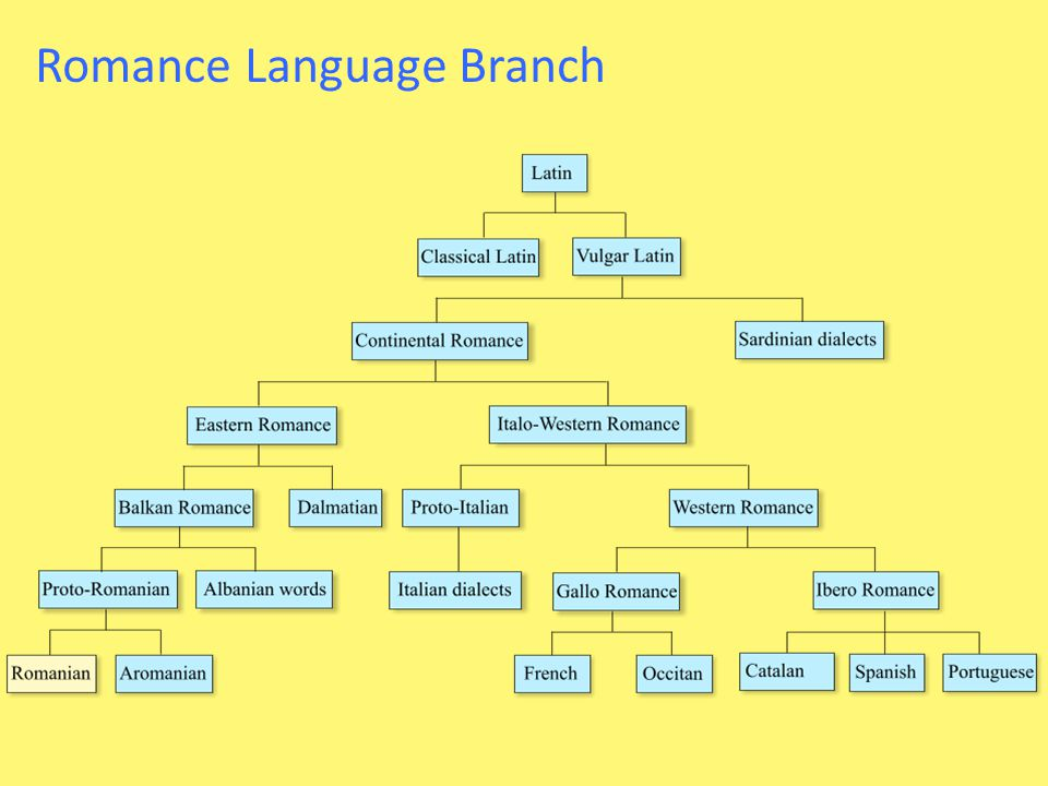 Romance Language Branch