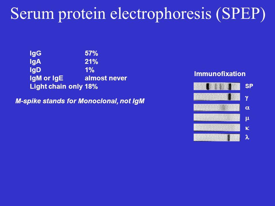 Serum protein electrophoresis (SPEP)