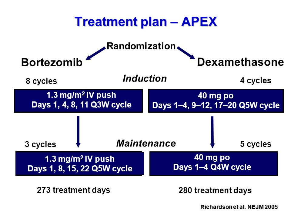 Treatment plan – APEX Bortezomib Dexamethasone Randomization Induction