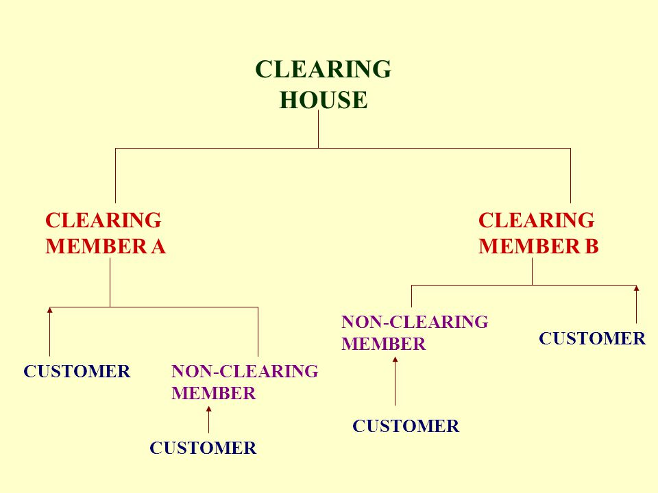 CLEARING HOUSE CLEARING MEMBER A CLEARING MEMBER B NON-CLEARING MEMBER